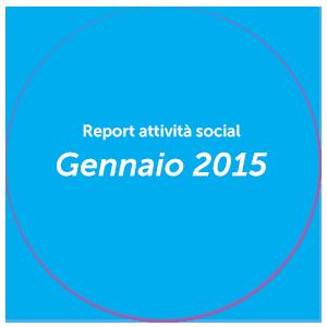 Report Gennaio 2015